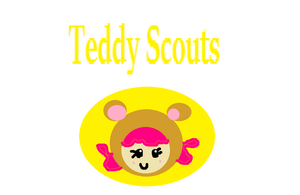 TEDDY SCOUTS