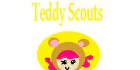 Teddy Scouts