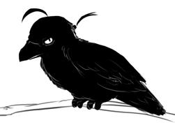 Hailey raven