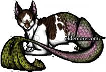 Cat-fish Sea Servals3