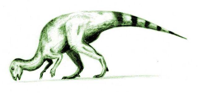 File:Hypsilophodon.jpg