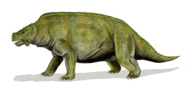 File:Scutosaurus BW.jpg