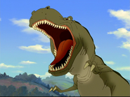 LBT Albertosaurus arctunguis