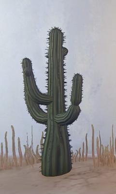 Tall Desert Cactus prop placed