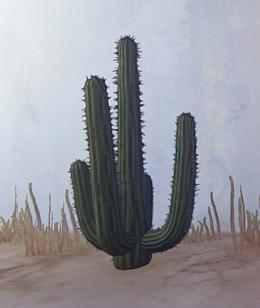 Desert Cactus prop placed