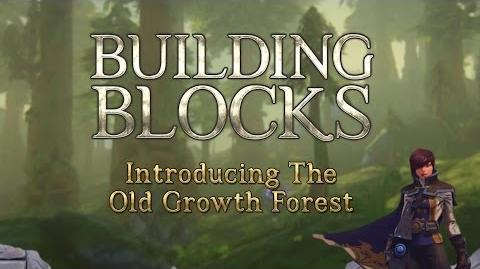 Building Blocks The Old Growth Forest