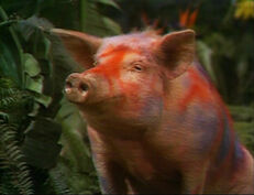 Land-of-the-lost-season-2-3-fair-trade-episode-20-savage-wild-pig-review-episode-guide-list