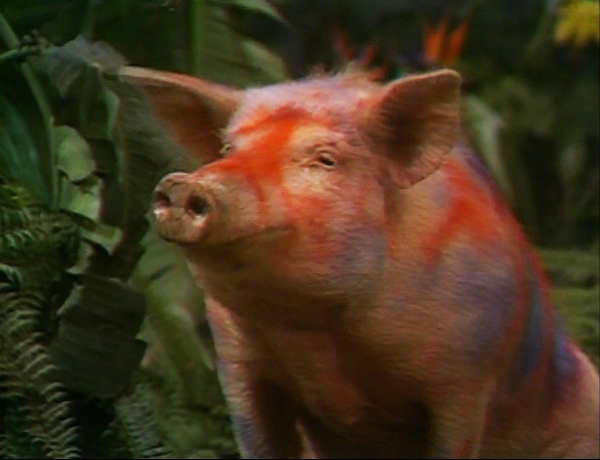 File:Land-of-the-lost-season-2-3-fair-trade-episode-20-savage-wild-pig-review-episode-guide-list.jpg