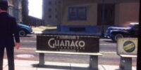 Guanaco Cigarettes