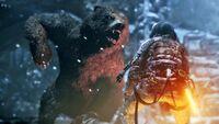 Lara vs Bear