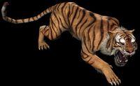 Tiger TRU Render
