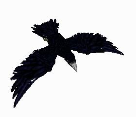 File:Crow 5.jpg