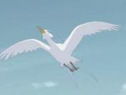 GrandBird
