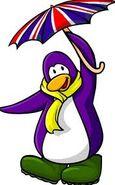 British penguin