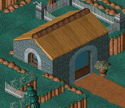 Twinsen's house1