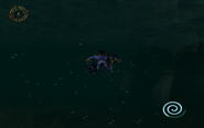 SR2-Swim-UnderwaterCrawl