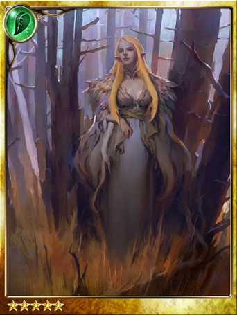 Forbidden Forest Witch