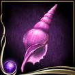 Purple Seashell