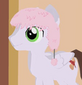 Fluffle Hat equipped.png