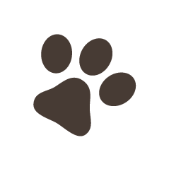 File:Cutie paw1.png