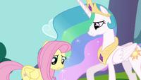 Princess Celestia with unsure Fluttershy S03E10