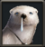 Hiruk Icon