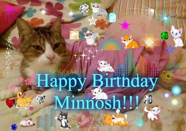 File:Minnosh's 8th Birthday 1.jpg