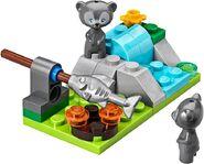 41051 bears