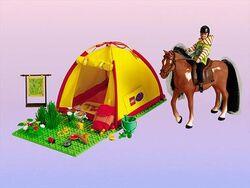 3143-Camping Trip