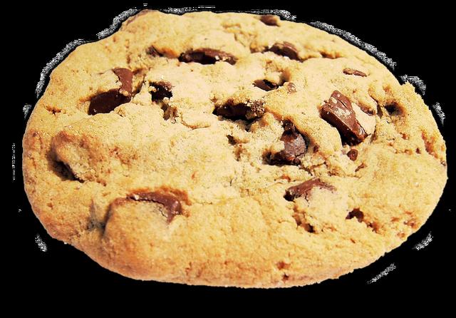 File:20120315192444!Cookie.png