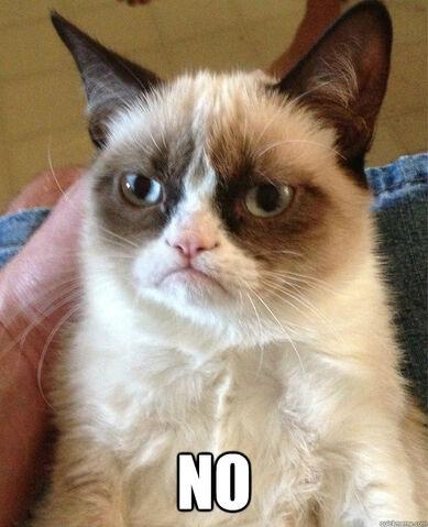 File:39215-grumpy-cat-no-Rwoe.jpeg