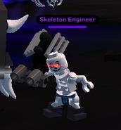 SkeletonEngineer