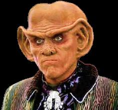 Quark1