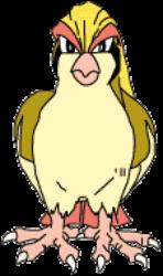 018 Pidgeot OS2