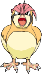 017 Pidgeotto OS2
