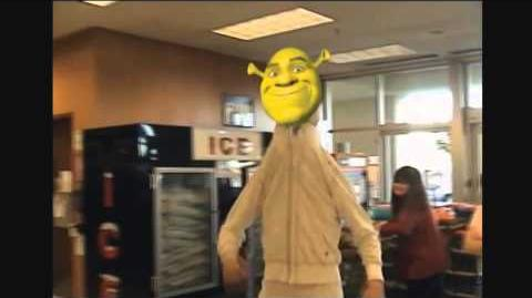 Attack On Shrek