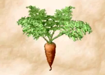 File:Carrot 2.png