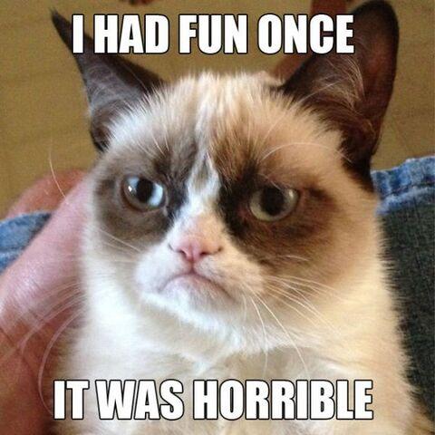 File:Grumpy-cat.jpg