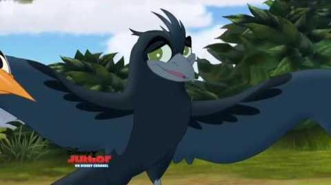 Bird of a Thousand Voices (Latin Spanish)