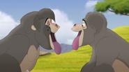 The-lost-gorillas (84)