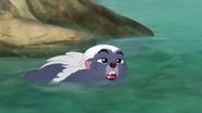 Follow-that-hippo (87)