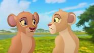 Baboons (163)