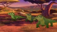Let-sleeping-crocs-lie (337)