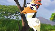 Ono-the-tickbird (367)
