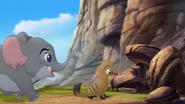 Follow-that-hippo (254)