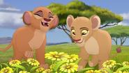 Baboons (65)