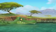 Follow-that-hippo (345)