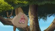Baboons (140)