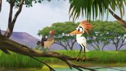 Ono-the-tickbird (341)
