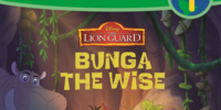 Bunga the Wise (book)